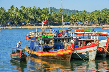 Image result for dried fish arakan