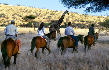 KEN3617 Guests view game from horseback at Wilderness Trails, Lewa Downs.