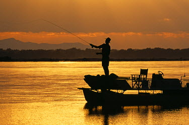 ZAM2484 Zambia, Lower Zambezi National Park. Fly fishing for Tiger fish from a barge on the Zambezi River at dawn.