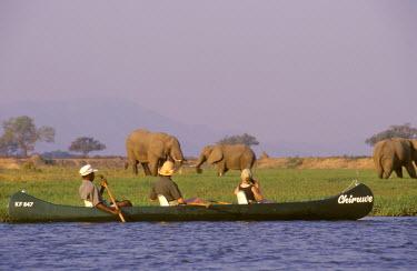 ZIM1952 . Canoeing on the Zembezi River.