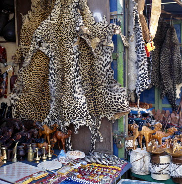 DJI1042 Despite a worldwide ban on trade in leopard skins, they are openly on sale in curio stalls catering to tourists at Djibouti-ville.  Most of the skins will have been smuggled into Djibouti from neighbo...