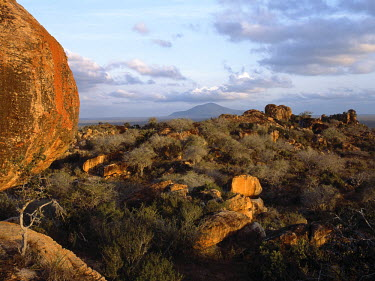 KEN4574 Huge granite boulders take on a beautiful hue in the late afternoon sun.  Kasigau hill rises from the arid plains in the background.