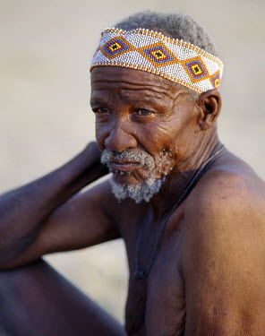 An old !Kung man. The !Kung are San hunter-gatherers, often referred to as Bushmen. They differ in appearance from the rest of black Africa having yellowish skin and being lightly boned, lean and musc...