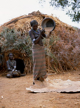 ETH1965 A Dassanech woman winnows grain by pouring it from her metal tin and letting it fall onto a calfskin.  Much the largest of the tribes in the Omo Valley numbering around 50,000, the Dassanech (also kno...