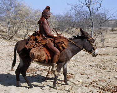 NAM3090 An old Himba woman, upright despite her years, rides her donkey through harsh land where mid-day temperatures rise to 400C.  Her body gleams from a mixture of red ochre, butterfat and herbs. Her hair...