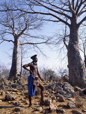 NAM3111 A Himba man stands in rocky ground among baobab trees.  He has the traditional hairstyle of a married man, known as ondumbu.  The hair is piled high on the crown of the head and covered with a cloth....