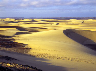 NAM3147 Beautiful sand dunes interspersed with areas of gravel grace the stark landscape in a private concession of the Skeleton Coast Park between Purros and the Atlantic Ocean. Mornings in this area are rar...