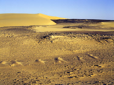 SUD1134 Magnificent desert scenery in the Nubian Desert of northeast Sudan has been created by the erosion of sedimentary rock, which in places is highly oxidised. The crescent-shaped dunes in the distance ar...