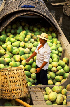 CH1352 Loading water melons onto a barge on one of the canals in Shaoxing.  The city is known for its canals and its rice wine.