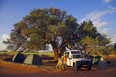 NAM3507 A safari guide stands in front of his Land Cruiser at Sesriem campsite. Behind him, tents are set up under a camelthorn tree.