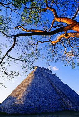 MEX1153 The Magician's Pyramid, Uxmal, Yucatan State, MexicoUxmal was occupied from 600 to 900 AD and was considered to be an important city in the Late Classic period. The Pyramid of the Magician stand 39 m...