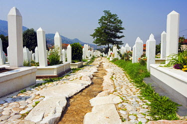 BOS1033 Stream running through Memorial Cemetery
