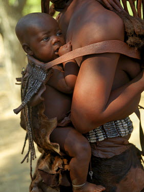 NAM3563 A child is carried on his mother's back in a beautifully decorated leather carrier. A woman's body is smeared with a mixture of red ochre, butterfat and herbs. They still dress traditionally, wearing...