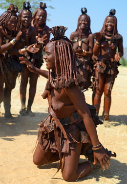 NAM3542 Himba women perform the otjiunda dance, stamping their feet, clapping and chanting while one of them sways on her knees in the centre of the circle. Their bodies gleam from a mixture of red ochre, but...