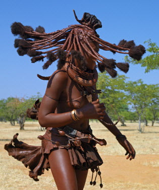 NAM3540 Himba women perform the otjiunda dance, stamping their feet, clapping and chanting while one of them gyrates in the centre of the circle. Their bodies gleam from a mixture of red ochre, butterfat and...