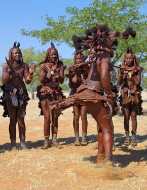 NAM3533 Himba women perform the otjiunda dance, stamping their feet, clapping and chanting in a circle. Their bodies gleam from a mixture of red ochre, butterfat and herbs. Their long hair is styled in the tr...