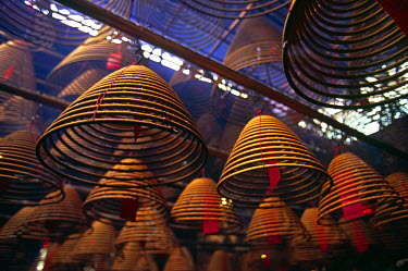 CH1501 Incense spirals hang from the ceiling of the Buddhist Man Mo Temple in Sheung Wan district, Hong Kong Island