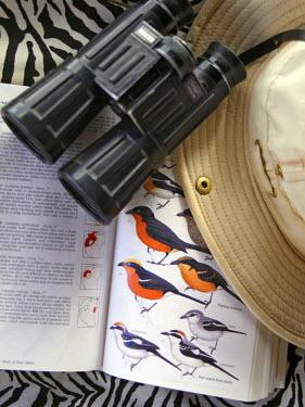 KEN5567 Bird book, binoculars and safari hat.