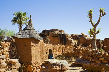 MAL0502 Mali, Dogon Country, Koundu. A small settlement built among rocks near the Dogon village of Koundu. Dwellings have flat roofs while granaries to store millet have pitched thatched roofs. The leaves of...