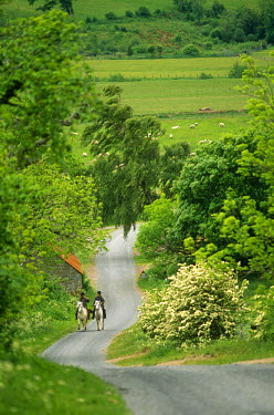ENG8645 England, Northumberland, Harbottle. Horseriding along a country lane.