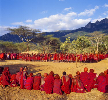 KEN5803 Africa, Kenya, Kajiado District, Ol doinyo Orok. In the late afternoon light, a large gathering of Maasai warriors wait in line to be blessed by the elders during an Eunoto ceremony when the warriors...
