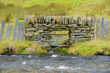 WAL6841 Wales, Conwy, Snowdonia. A drystone and slate wall crosses a stream up in the Cwm Llan alongside the Watkin Path one of the routes up Snowdon.