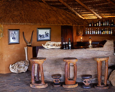 ZAM3681 Zambia, South Luangwa National Park, Shenton Safaris. Rustic bar built from a local leadwood tree, Kaingo Camp.