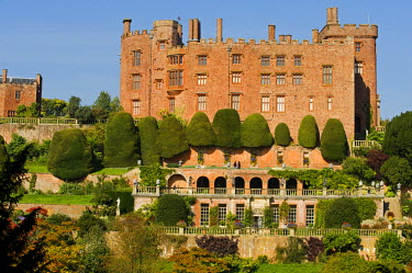 WAL6957 Wales; Powys; Welshpool.  View of Powis Castle and the layers of Italianate terraces with the famous yew trees in the spectacular garden