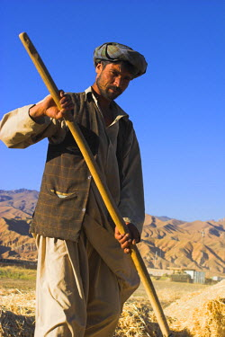 AF01011 Afghanistan, Bamiyan Province, Bamiyan, Man threshing