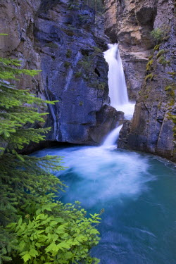 CA08156 Johnston Canyon,  Banff National Park, Alberta, Canada