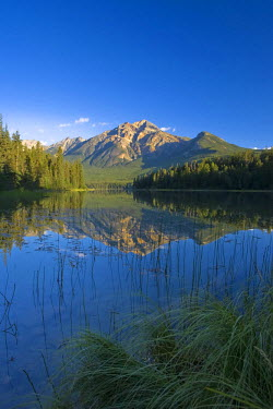 CA08194 Pyramid Lake & Pyramid mountain, sunrise, Jasper National Park, Alberta, Canada