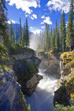 CA08205 Athabasca Falls, Jasper National Park, Alberta, Canada
