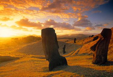 CL01056 Moai Quarry, Easter Island, Chile