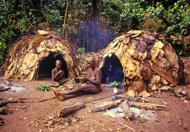 ZR01001 Pygmy tribe, Democratic Republic of Congo (Zaire)