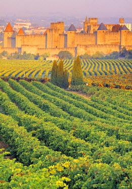 FR07277 Vineyards, Carcassonne, Aude, Languedoc-Roussillon, France