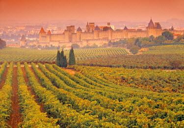 FR07278 Vineyards, Carcassonne, Aude, Languedoc-Roussillon, France