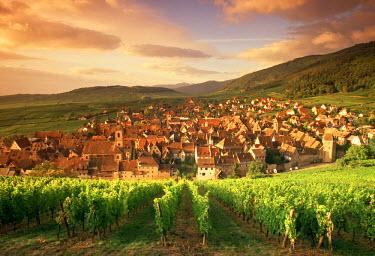 FR09015 Riquewihr, Alsace, France