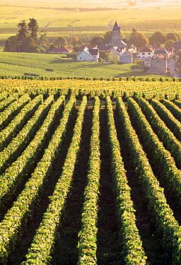 FR12010 Oger, Champagne, France