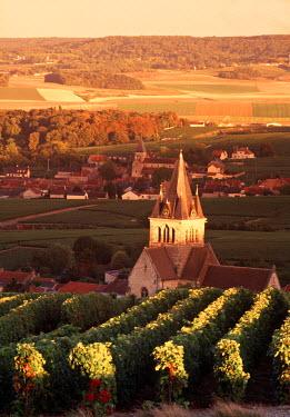 FR12015 Ville-Dommange, Champagne, France