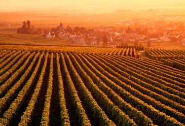 FR12021 Oger, Champagne, France