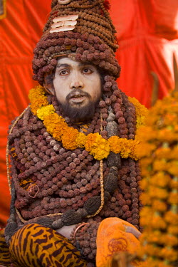 IN04115 Sadhu at Kumbh Mela festival as a follower of Hindu Godess Shiva, Allahabad, Uttar Pradesh, India