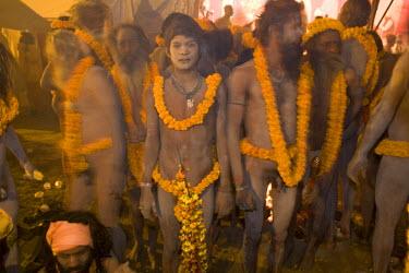 IN04116 Naga Sadhus preparing for bathing in river Ganges at Kumbh Mela Festival, Allahabad, Uttar Pradesh, India