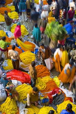 IN04138 Flower Market, Calcutta, West Bengal, India