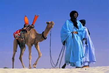 ML01056 Touareg tribesman leading camel, Mali