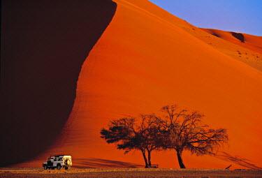 NB01008 Sossusvlei Dune, Naukluft Park, Central Namib, Namibia