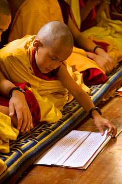 NP02309 Boy Monk reading at Tibetan Buddhist Monastery, Kathmandu, Nepal