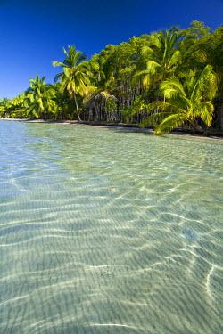 PN02018 Panama, Bocas del Toro Province, Colon Island (Isla Colon) Star Beach