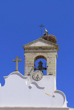 PT06083 Arco da Vila with Storks Nest, Faro, Algarve Portugal