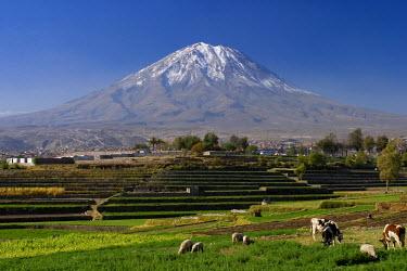 PU02080 El Misti Volcano and Arequipa town, Peru