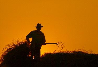 RM01041 Farmer with pitchfork, Moldavia, Romania